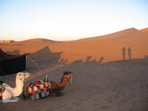Marocco desert