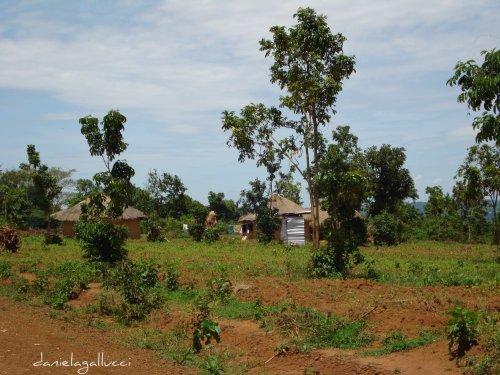 Kogelo, Kenya