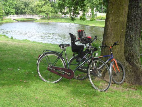bici olandesi